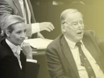 AfD im Bundestag: Die Fraktionsvorsitzenden Alice Weidel und Alexander Gauland