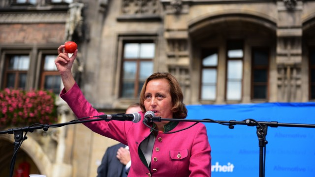 Politik in München Protest gegen AfD