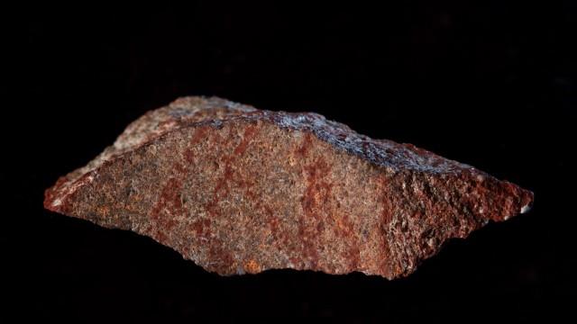 Archäologie und Menschheitsgeschichte Anthropologie