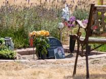 Katzenbesitzer verklagt Tierfriedhof