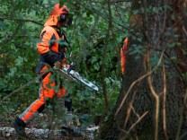 A forest worker carries his chain saw during a clearing operation in the forest 'Hambacher Forst' in Kerpen-Buir near Cologne