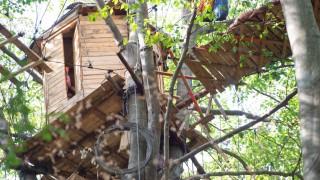 Hambacher Forst - Baumhaus und Brücke nach einem Unfall