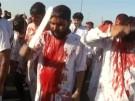 Shiiten begehen Aschura-Fest (Vorschaubild)