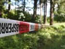 Geständnis im Fall Peggy:Mann brachte Leiche in Wald (Vorschaubild)