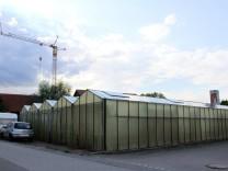 Altomünster Vogelgarten