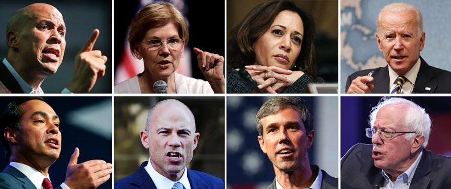 Politik USA US-Demokraten 2020