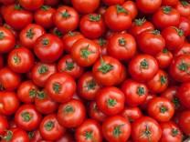 Tomaten, 2018