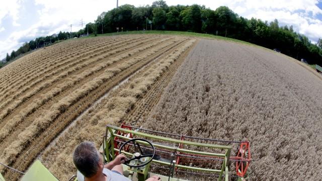 Freising Studium der Landwirtschaft
