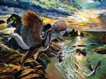 Archaeopteryx albersdoerferi