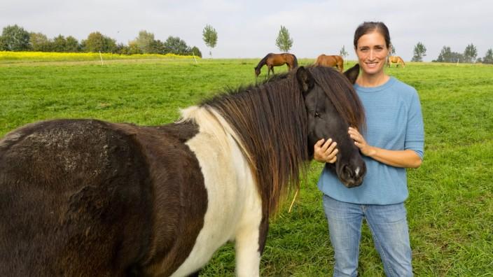 Poing - Pferde, Langhof, Helene Noack.