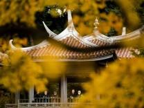 Photographers stand in the Taiwan Pavilion in Shinjuku Gyoen National Garden on a sunny autumn day in Tokyo