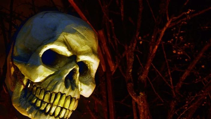 Halloween-Gruselkopf