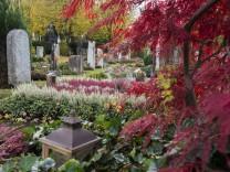 Oberhaching, Friedhof, Grabpflege, Allerheiligen,