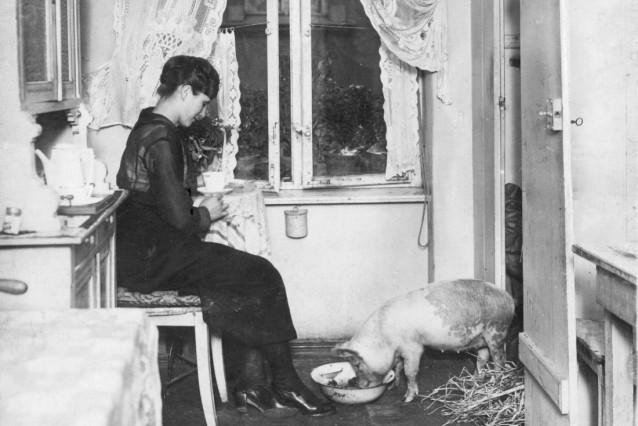 Hungersnot in deutschen Großstädten, 1919