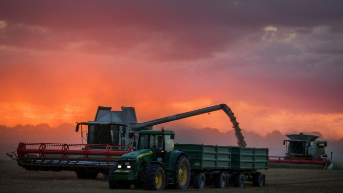 Getreideernte fällt geringer aus
