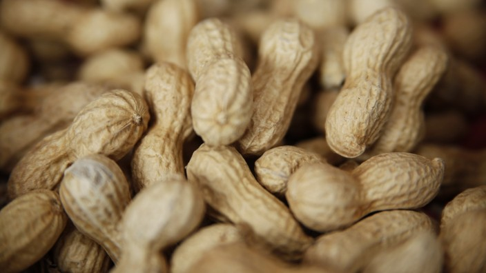 Erdnüsse, 2013