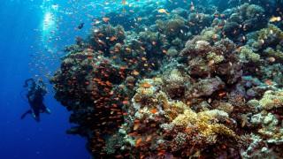 Tourismus Klimawandel