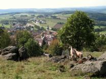 Tännesberg Oberpfalz Modellgemeinde Biodiversität