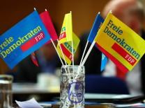 FDP Landesparteitag