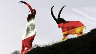 Kämpfende Alpensteinböcke Capra Ibex im Gegenlicht Nationalpark Hohe Tauern Kärnten Österreich