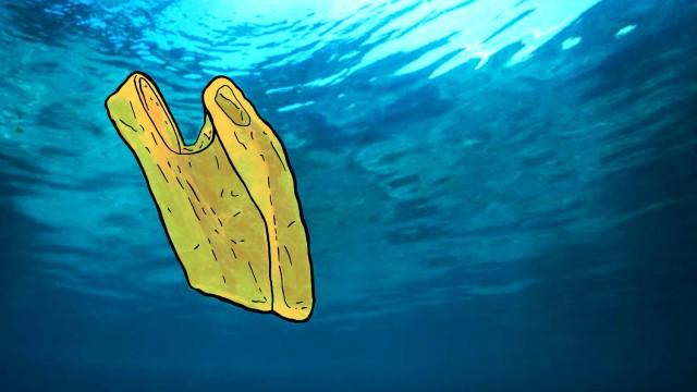 Essen und Trinken Öko-Serie zu Bioplastik