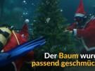 Nasse Bescherung im Aquarium (Vorschaubild)