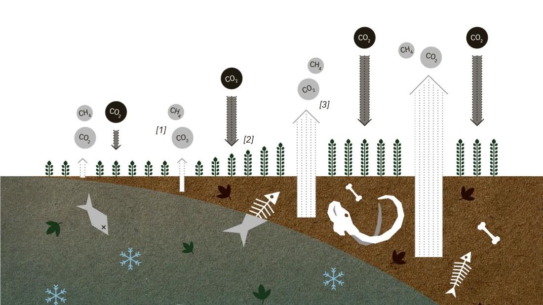 Klimawandel für Einsteiger