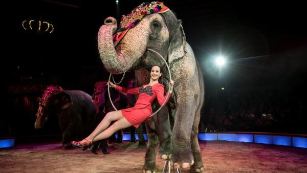 Winterpremiere im Circus Krone in München, 2018