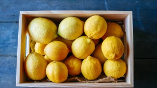 Lemons in wooden box on blue wood PUBLICATIONxINxGERxSUIxAUTxHUNxONLY KIJF000580