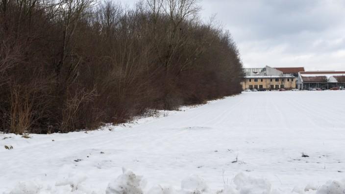 Kirchheim, Gymnasium, Grundstück gegenüber für Neubau, Waldhügel muss gerodet werden,
