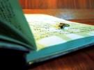 Tagebuch-SZ