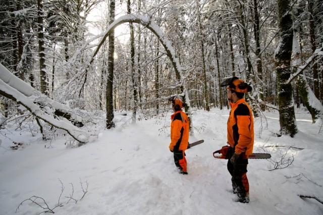 Hohe Schneelasten im Ebersberger Forst. Räumen der Wege.