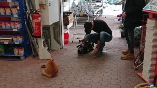 Dreharbeiten im Starnberger hagebaumarkt