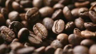 Kaffee: Nur für wenige Konzerne ist es 'braunes Gold'
