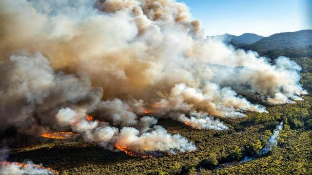 Australien - Hitzewelle 2019 verursacht Buschfeuer in Tasmanien