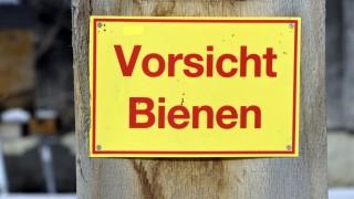 """Höhenkirchen-Siegertsbrunn """"Rettet die Bienen"""""""