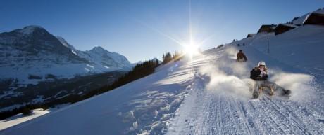 Rodler auf der längsten Rodelbahn der Alpen in Grindelwald in der Schweiz