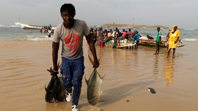 Fischer Senegal Fischfang