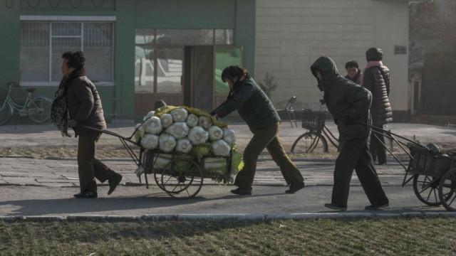 Politik Nordkorea Landwirtschaft