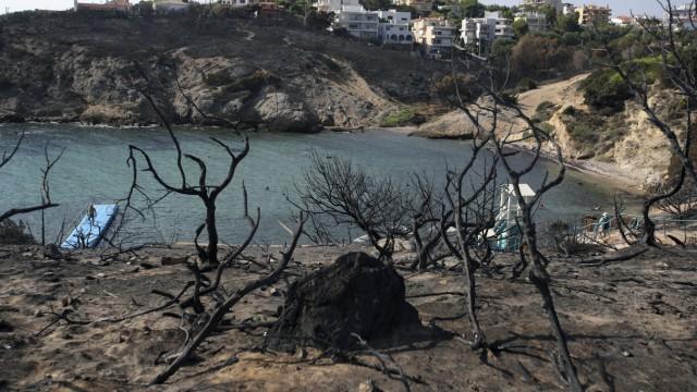 Waldbrände Waldbrände