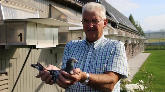 Tiere Ein Anruf bei: Joel Verschoot, Rekord-Züchter