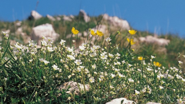 Reiseregion Monte Baldo
