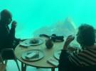 Erstes Unterwasserrestaurant Europas (Vorschaubild)