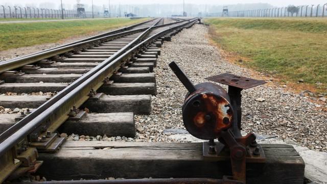 Ehemaliges Konzentrationslager Auschwitz-Birkenau, 2011