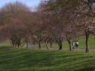 Sonne und Frühlingsgefühle (Vorschaubild)