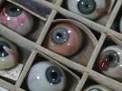 Ein Blick in die Vergangenheit der Augenheilkunde (Vorschaubild)