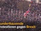 Riesen-Demo gegen Brexit (Vorschaubild)
