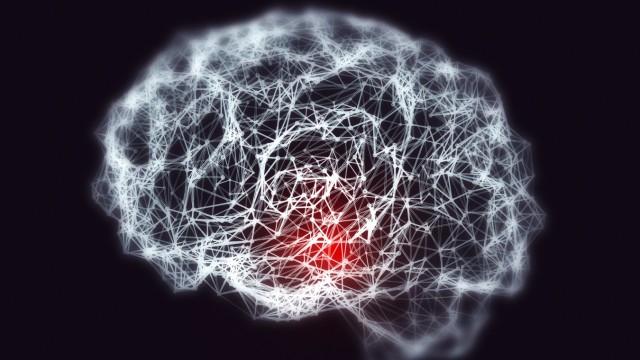 Nervenzellen im Gehirn