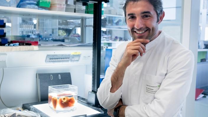 Dr. Ali Ertürk  Group Leader Institute for Stroke and Dementia Research (ISD),  Klinikum der Universität München Ludwig Maximilians University of Munich  Feodor-Lynen-Strasse 17
