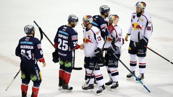 Shake Hands nach Spielende Eishockey Deutsche Eishockey Liga DEL Saison 2018 2019 29 03 2